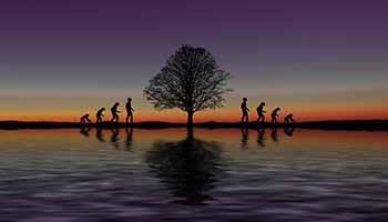 evolucionismo_blog