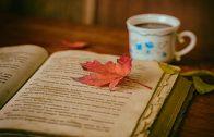 libroflor_blog